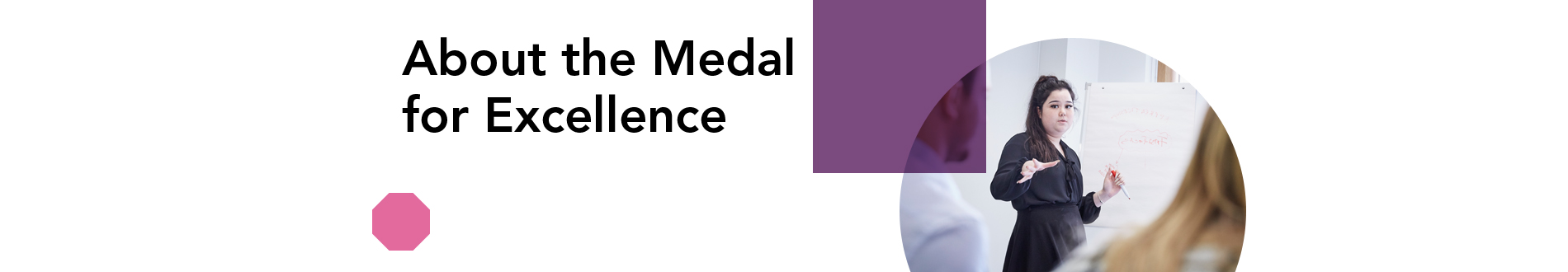 Z_about-the-medal-for-excellence_1900x330 jpg